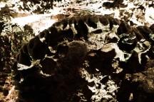 caverns-6
